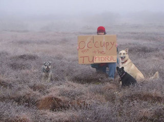 occupy-the-tundra.jpg